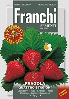 """Franchi Seeds of Italy""""Strawberry Fragola Quattro Stagioni"""" Seeds"""