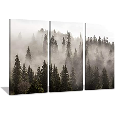 STUNNING WOODLAND TREES FOREST PATH CANVAS PICTURE PRINT WALL ART #2302