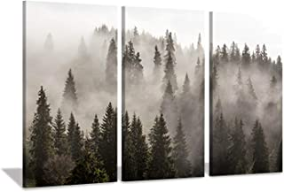 Natural Landscape Wall Art Paintings: Photographic Artworks Dark Tree line with Foggy Misty Forest Pine Print on Wrapped Canvas for Decoration, Multi-Piece Image (16