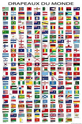 1art1 Drapeaux du Monde Poster - Noms des Pays Et Capitales, en Français (91 x 61 cm)