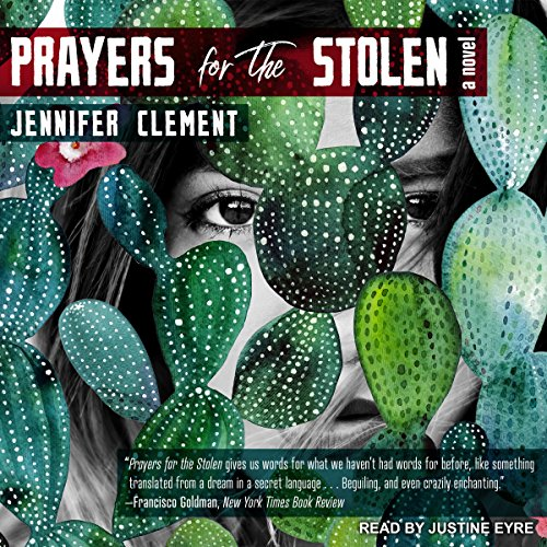 Prayers for the Stolen audiobook cover art