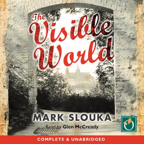 The Visible World audiobook cover art