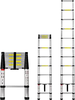 10 ft extension ladder