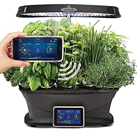 Indoor Hydroponic Growing Systems beginners experts