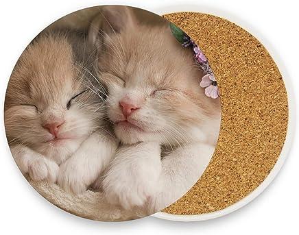 2 unidades multicolor cerámica Posavasos redondos de cerámica absorbente con diseño de gato juego de 1