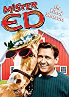 Mister Ed: The Final Season [DVD] [Import]