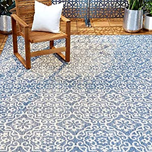 Home Dynamix Nicole Miller Patio Country Danica Area Rug, 7'9″x10'2″, Blue/Gray, 10 Feet