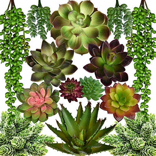 Artificial Succulents - 14 Pack