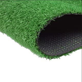 YNFNGX Artificial Grass Outdoor Green 20mm Encrypted Lawn Dog Pet Natural And Realistic Garden Roof Corridor False Turf (S...