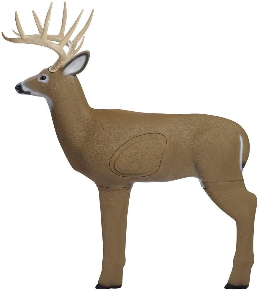 Shooter Buck 3D Deer Archery Target with Replaceable Core, Brown : Sports & Outdoors