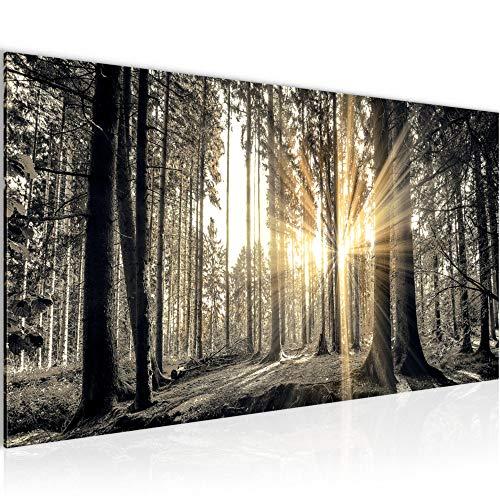 Wandbilder Wald Landschaft Modern Vlies Leinwand Wohnzimmer Flur Sonne Grau Braun 503812a