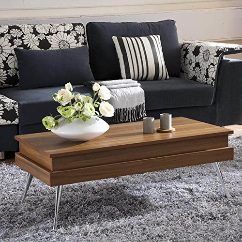 Luxury Sturdy Wooden Modern Seibert Storage Lift Top Rectangle Dining Coffee Table