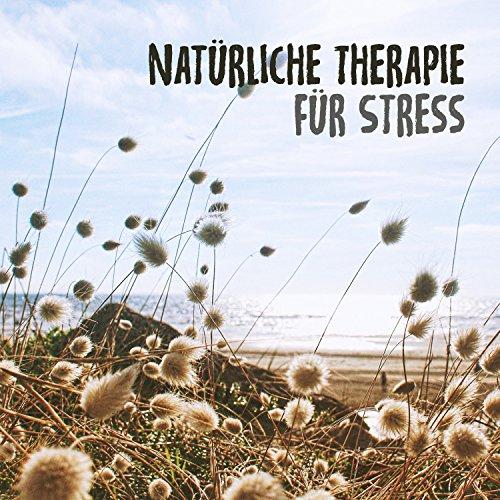Natürliche Therapie für Stress: Die beste Entspannungsmusik für Meditation, Entspannung,...