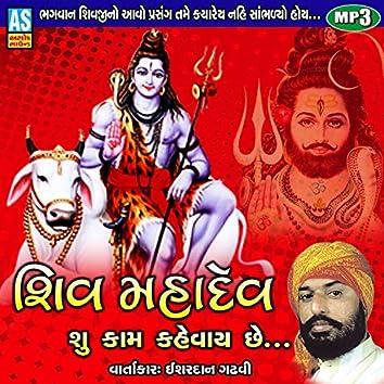 Shiv Mahadev Shu Kam Kahevay Chhe - Shiv Song