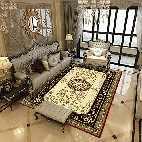 QWEASDZX Rug Living Room Soft Fluffy Rug Home Rug Bedroom Sofa Coffee Table Floor Mat Living Room Rug 80x160cm
