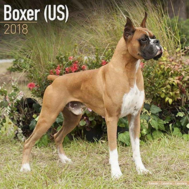ラダコンチネンタル液体Boxer Calendar 2018 - Dog Breed Calendar - Premium Wall Calendar 2017-2018 [並行輸入品]