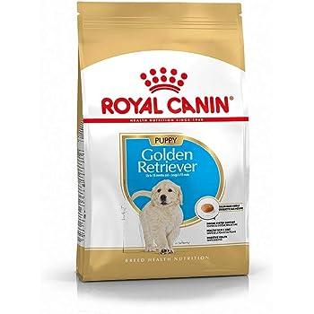 Royal Canin Golden Retriever Junior 12 Kg 1er Pack 1 X 12 Kg Amazon De Haustier