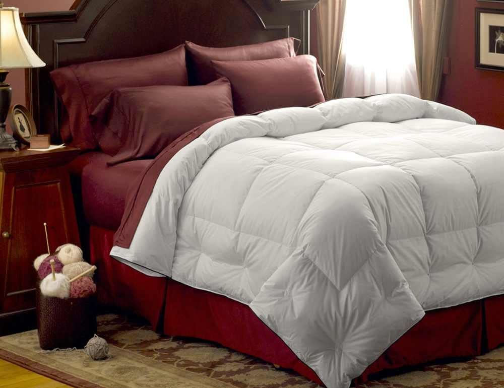 Pacific Max 75% OFF Coast Feather Medium Warmth Comforter Down - Super beauty product restock quality top! King