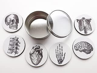 Anatomy Coasters Gift Set 6 Flexible Mousepad 3.5 Inch Brain Skull Anatomical Heart Human Body Doctor Nurse Graduation