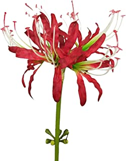 Best artificial red spider lily Reviews