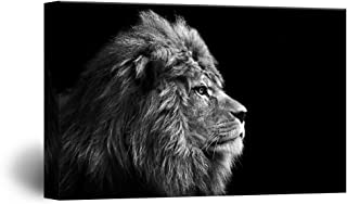 wall26 Canvas Wall Art - A Lion on Balck Background - Giclee Print Gallery Wrap Modern Home Decor Ready to Hang - 32x48 inches
