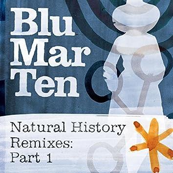 Natural History Remixes, Pt. 1