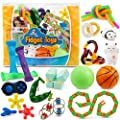 Sensory Fidget Toys 23-Pack – Stress Relief Toys for Focus & Calm – Toy Box & Party Favor Pack + Reusable Bag – Fidget Spinner, Stress Ball, Infinity Cube, Sensory Rings, & More by Chuchik from Chuchik Toys