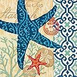 DIMENSIONS Needlepoint Kit, Starfish Pattern, 14'' x 14''