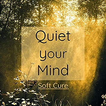 Quiet Your Mind: The Best Healing Music And Curative Songs To Relieve Your Mind