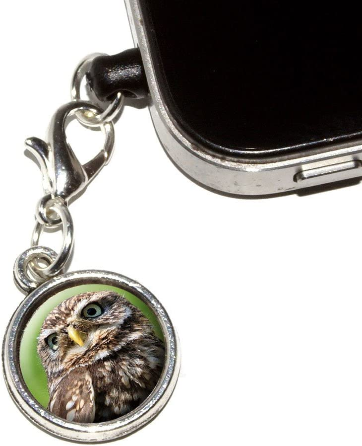 Graphics Ranking TOP18 and More Tiny Little Anti-Dust Universal Plug specialty shop Owl Small