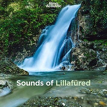 Sounds of Lillafüred