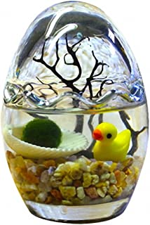 OMEM Seaweed Balls Cute Egg Bottles, Algae Moss Balls Oval Glass Jar Aquarium Terrarium (River Sand)