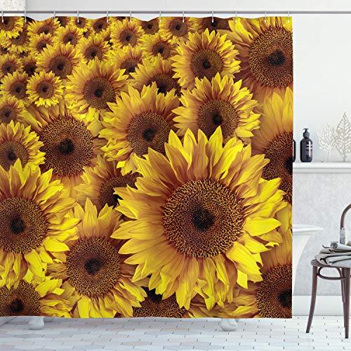 Ambesonne Sonnenblumen-Dekor-Kollektion, Vintage, rustikales Aussehen, Sonnenblumen, Feldblühen, Botanisches natürliches Blütenbild, Polyester-Stoff, Badezimmer-Duschvorhang-Set mit Haken, Goldbraun