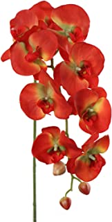 Larksilk Artificial Orchid Stems, Real Touch Phalaenopsis Flowers, Orange, 33.5