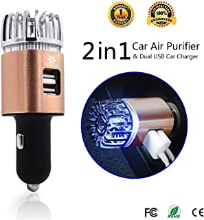 Exemplife Car Air Purifier, Freshener Adapter with 2 USB Ports,Car Air Ionizer Remove Smoke, Bad Smell and Odors,Keep The Air in Car Fresh,Champagne (Champagne)…