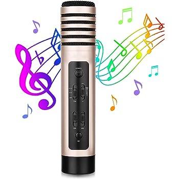 Micrófono Inalámbrico 3 en 1 FM Micrófono Karaoke Bluetooth 5 Voces Ajustables 2 Modos de Grabación Hi-Fi Altavoz Micrófono Portátil Compatible con PC/Teléfono Inteligente/Automóvil: Amazon.es: Instrumentos musicales