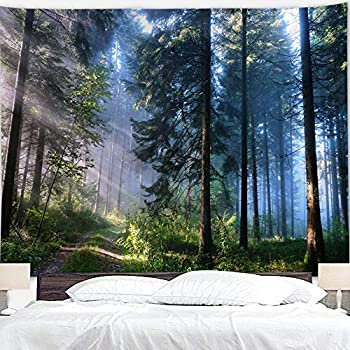 BJYHIYH Misty Forest Tapestry Wall Hanging Nature Landscape Tapestry Sunshine Through Tree Tapestries for Bedroom Living Room Dorm Decor 90.6 ×59.1