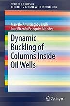 Dynamic Buckling of Columns Inside Oil Wells (SpringerBriefs in Petroleum Geoscience & Engineering)