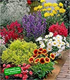 mehr Informationen und Artikel bestellen BALDUR-Garten Bunte - www.mettenmors.de, Tipps für Gartenfreunde