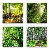 Wald und Bäume - Set A schwebend, 4-teiliges Bilder-Set je