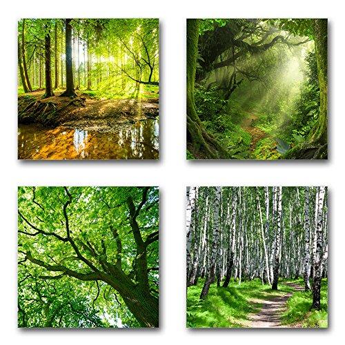 Wald und Bäume - Set A schwebend, 4-teiliges Bilder-Set je Teil 19x19cm, Seidenmatte Moderne Optik auf Forex, UV-stabil, wasserfest, Kunstdruck für Büro, Wohnzimmer, XXL Deko Bild