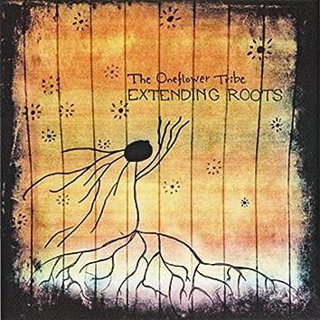 Extending Roots