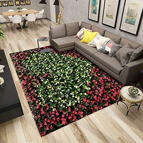 SWNN Carpet Nordic Modernen Minimalistischen Luxus Blumenfeld Natur Landschaft Teppich Wohnzimmer Korridor Schlafzimmer Nacht Kristall Samt Rechteckigen Anti-Rutsch-Matte Polyester
