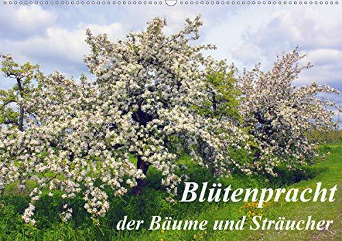 Blütezeit der Bäume und Sträucher (Wandkalender 2021 DIN A2 quer)