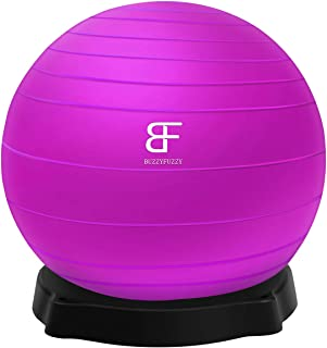 buzzyfuzzy 65 cm Exercise Ball Perfect for Balance/Yoga/Pilates/Strength core Training, Suit for Home Gym/Office Yoga Ball Desk Chair with Quick Pump
