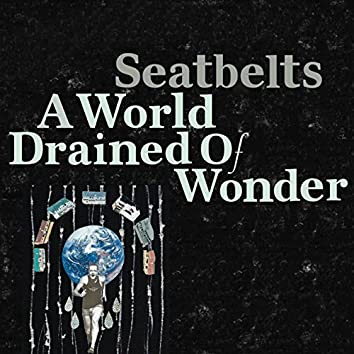 A World Drained of Wonder