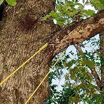 Baoblaze 24 Pouces Haute portée Arbre Membre Main Corde scie à chaîne et Lames Pliant Poche scie à chaîne pour Votre Camping, matériel de Survie sur Le
