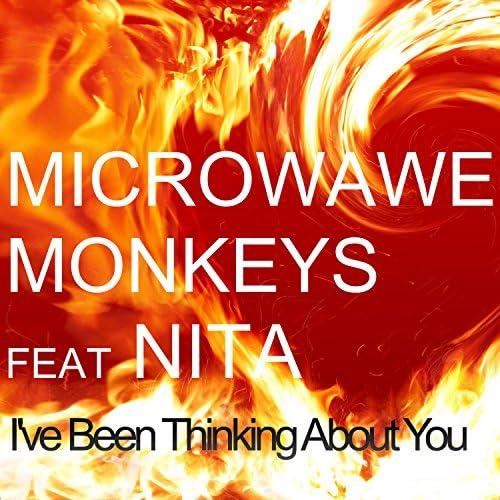 Microwave Monkeys feat. Nita