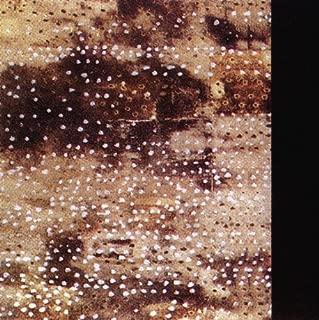 Buried Alive by Anglagard (1996-07-17)