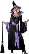 カリフォルニアコスチューム(California Costumes) グラマラス・ウィッチ 大人用(M) [INCANTASIA THE GLAMOUR WITCH / ADULT]